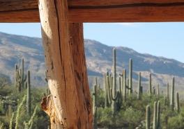 a dude ranch, Arizona - photo @SandraDanby